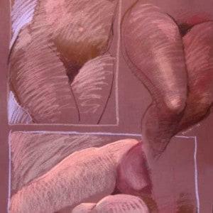 Three Nude Studies On Maroon Paper